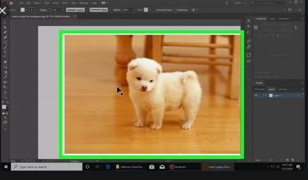 Adobe illustrator remove background from image